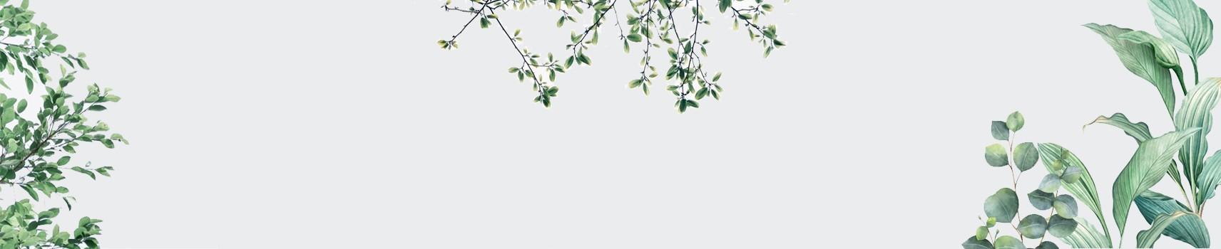 פרחים בגווני ירוק